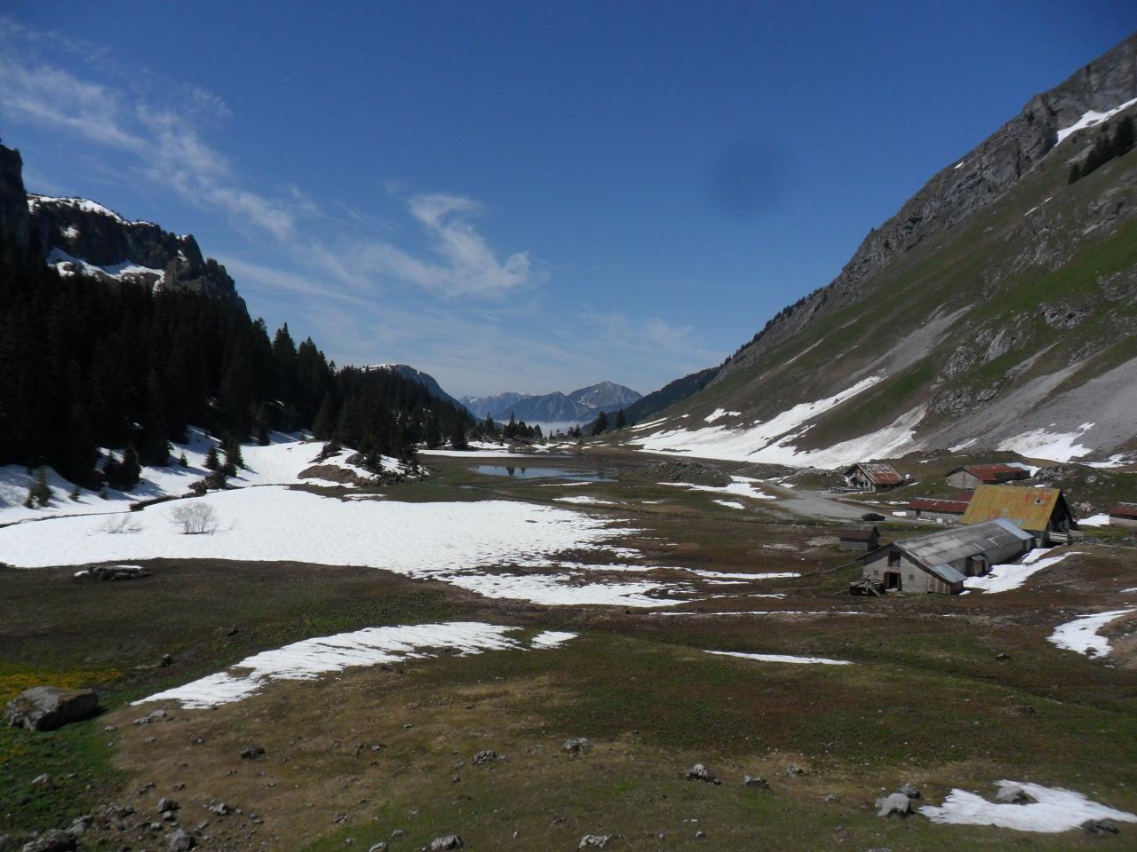 alpage de Bise, notre deuxième étape